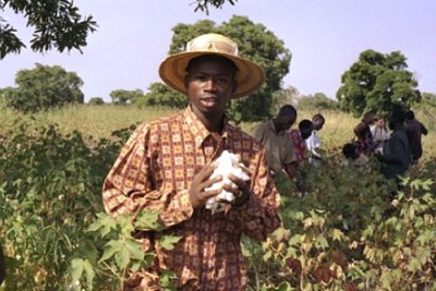 A cotton farmer: At least 16 million people in the country depend in one way or another on cotton.