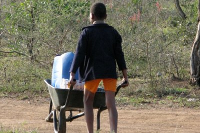A child pushes a wheelbarrow with water.