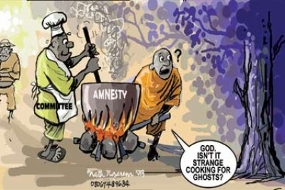 Mixed reactions trail Boko Haram amnesty.