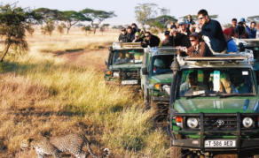 Tanzanian Tourism Operators Want More Govt Investment in Industry