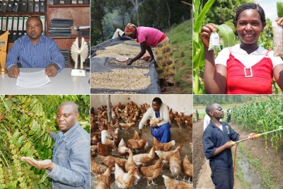 Some of the rising farmers in Africa.