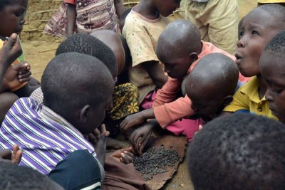 Children from Ngamani village in Ganze eat wild seeds.
