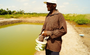 Gambia's Aquaculture On the Path of Sustainable Development