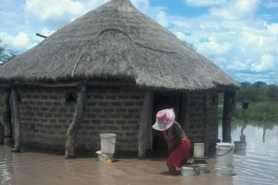 At least 50 families have been affected by flooding in Tsholotsho.