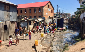 Madagascar Plague Under Control - South African Health Institute