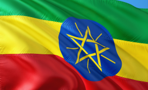 Is Ethiopia's Grand Reforms Causing Tension at Home?