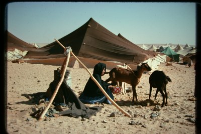 Saharan refugee camp between Tindouf, Algeria and the border with Western Sahara (file photo).