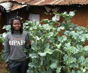 Sack_Gardening_in_Kibera's_Slums