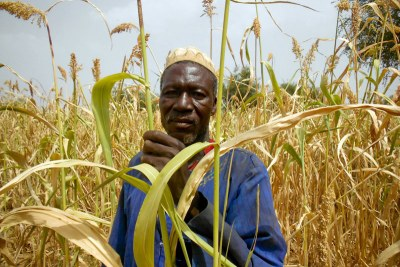 Soudre Amado is a farmer in Burkina Faso, where the rainy season has been poor.