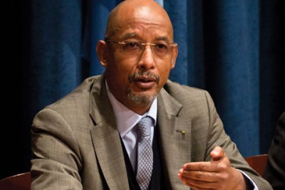 Ibrahim Mayaki, Secrétaire exécutif de l'Agence du NEPAD