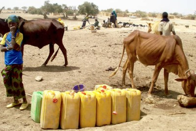 Food crisis in the Sahel.
