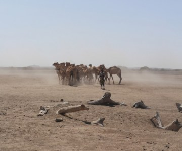 Trekking with Ethiopia's Nomads For a Better Life