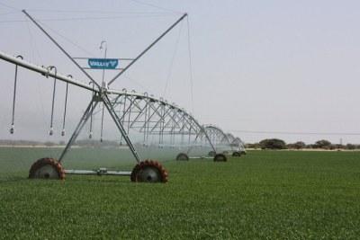 Des ONG opposées à l'agriculture intelligente face au climat