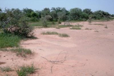 Le ressortissant roumain a été enlevé dans le nord du Burkina, dans la région de la réserve naturelle du Sahel, à Tambao.