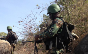 Cameroon Military Accused of Extrajudicial Executions