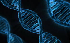 Science Body Seeks Better Genetics Ethics Code in South Africa