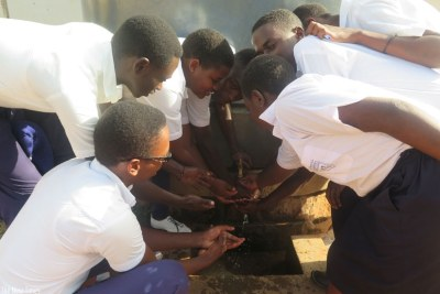 Students wash their hands (file photo).