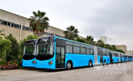 Does Tanzania's Acclaimed Rapid Bus System Exclude the Poor?