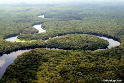 Rivière dans le parc national de la Salonga, Forêt équatoriale, 2005.