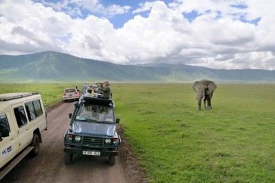 Safaris in Tanzania.