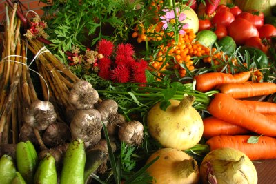 Vegetables from ecological farming.