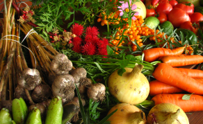 Why Eating Healthier is a Must as Climate Change Threatens