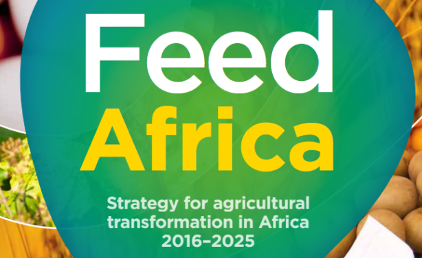 Africa's Nutrition Action Plan