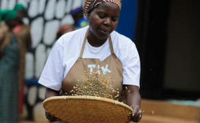 Rwanda's Coffee Industry Battles With Low Farm Incomes