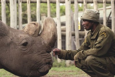 According to the Ol Pejeta Conservancy, it is believed the rhino, Sudan, died after age-related complications.