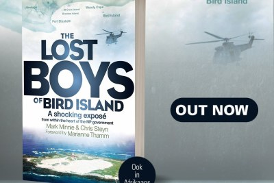 The cover of the book The Lost Boys of Bird Island.