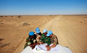 UN Urged to Take Concrete Action Towards Peace in Western Sahara