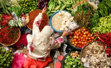 Lancement africain du rapport de la Commission EAT-Lancet