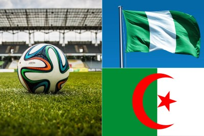 Afcon 2019: Nigeria to play Algeria in semi-finals.