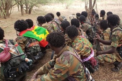 A group of armed fighters from the Oromo Liberation Army (OLA).