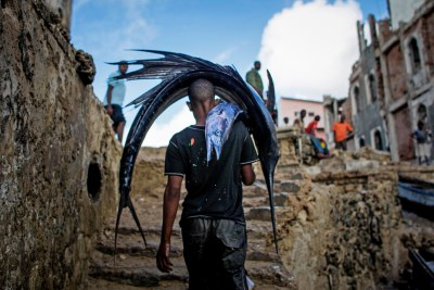 A Somali man carries a large sailfish on his head as he transports it to Mogadishu's fish market in the Xamar Weyne district of the Somali capital (file photo).